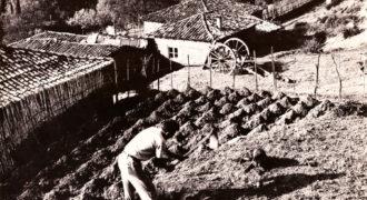 Σκάψιμο κήπου