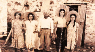 Αγροτικές εργασίες ρυζιού στο κτήμα Αθηνόδωρου στον κάμπο