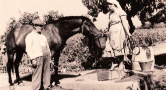 Πότισμα αλόγου. Περιοχή Ποτόκι