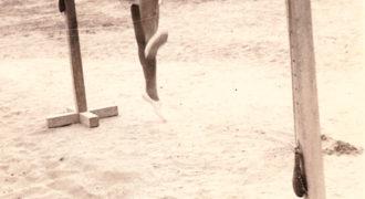Γυμναστικές επιδείξεις δημοτικού σχολείου - 2