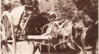 Ο Αναστάσιος Κούτρας πάνω στο κάρο του μαζί με τις εγγονές του. Το εν λόγω κάρο είχε κάνει πολλά χιλιόμετρα, αφού ο ιδιοκτήτης του έφερνε με αυτό εμπόρευμα για το μαγαζί του